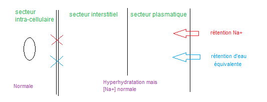 219 hyperhydratation intra-cellulaire