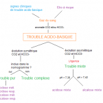 219.10 trouble acido-basique