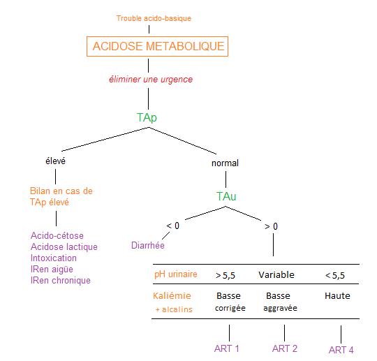 219.11 Acidose métabolique