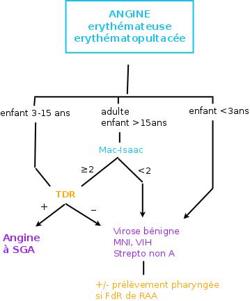 Angine à SGA : symptômes, étiologies, PEC... ~ MedG